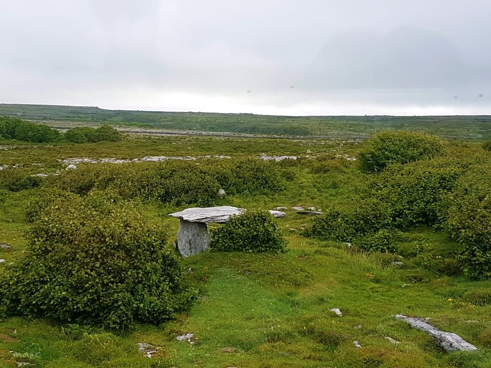 mini tomb