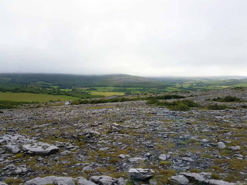 up the burren